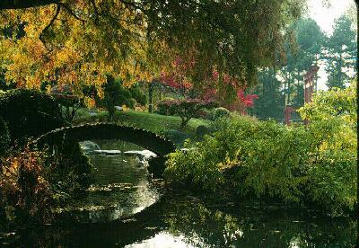 Japanese Hill And Pond Garden.